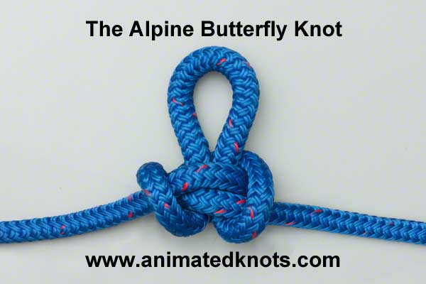 guides:alpine_butterfly_knot.jpg
